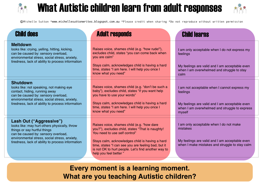 Autism Meltdowns And Aggression